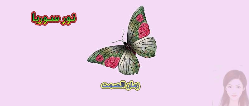 Nour Syria