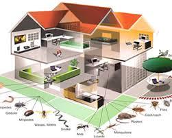 شركة مكافحة حشرات بابها 0551844053