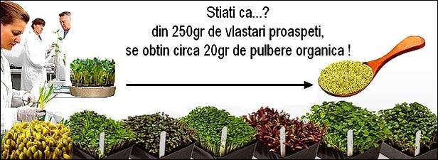 http://i21.servimg.com/u/f21/19/17/38/41/vlasta10.jpg