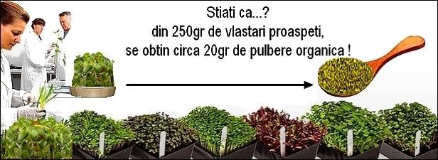http://i21.servimg.com/u/f21/19/17/38/41/vlasta14.jpg