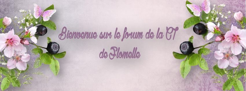 La CT de Flomelle