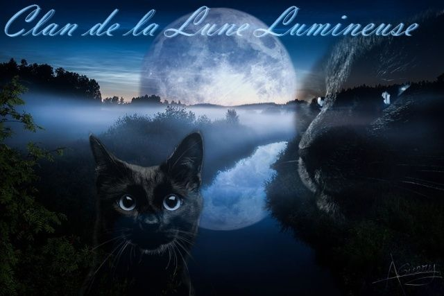 Le Clan de la Lune Lumineuse