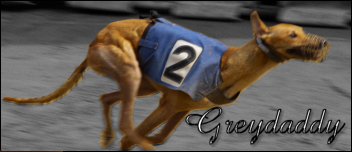 greyho10.png