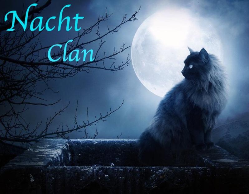 Nachtclan