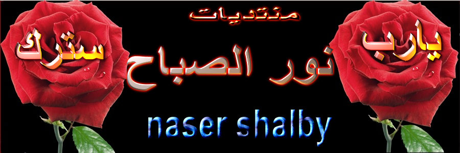 Nour Elsbah